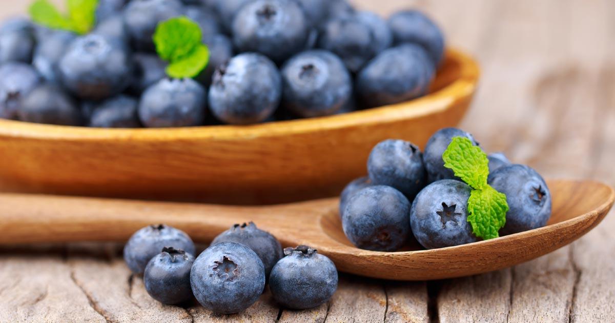 فوائد التوت الأزرق 10 فوائد صحية م ثبتة علميا توعية